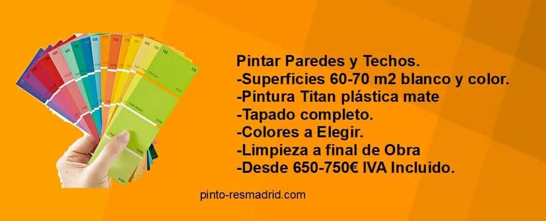 Oferta en Pintura Plastica