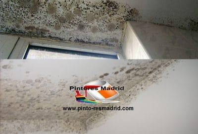 Las Causas de las humedades de la pared
